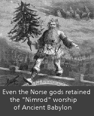 NIMROD SANTA TREE NORSE 2